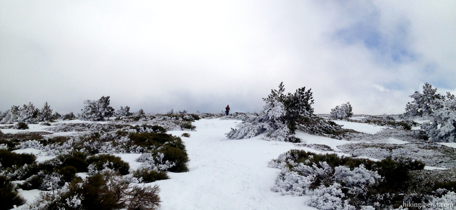 Paisaje invernal cerca de los Reajos