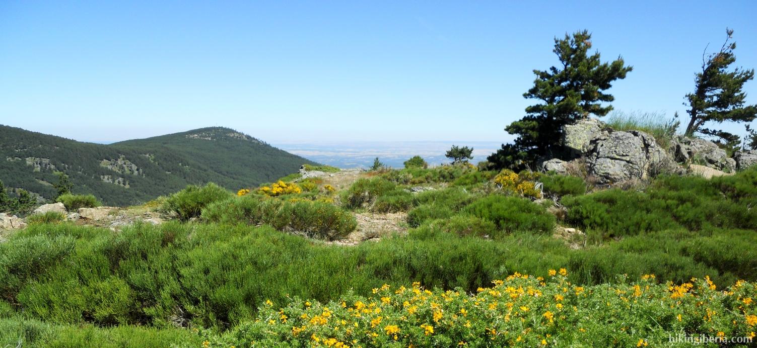Vista al valle de Lozoya