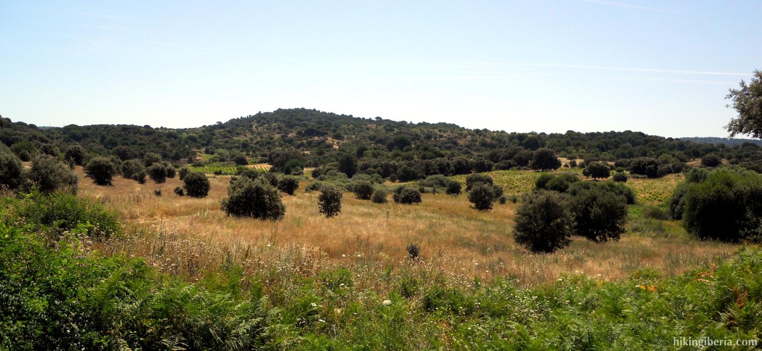 Heuvels vlakbij San Martín de Valdeiglesias