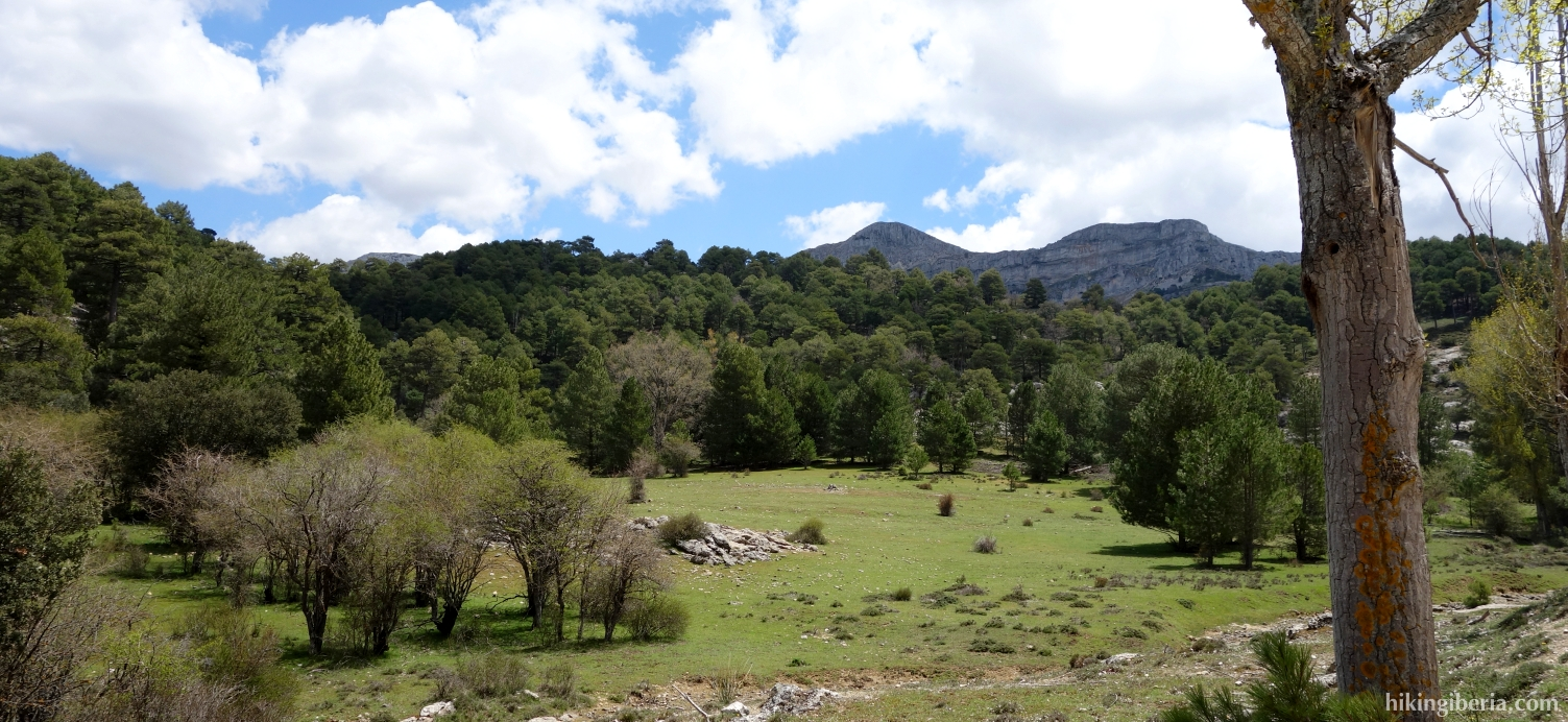 View from the Camino de las Navas