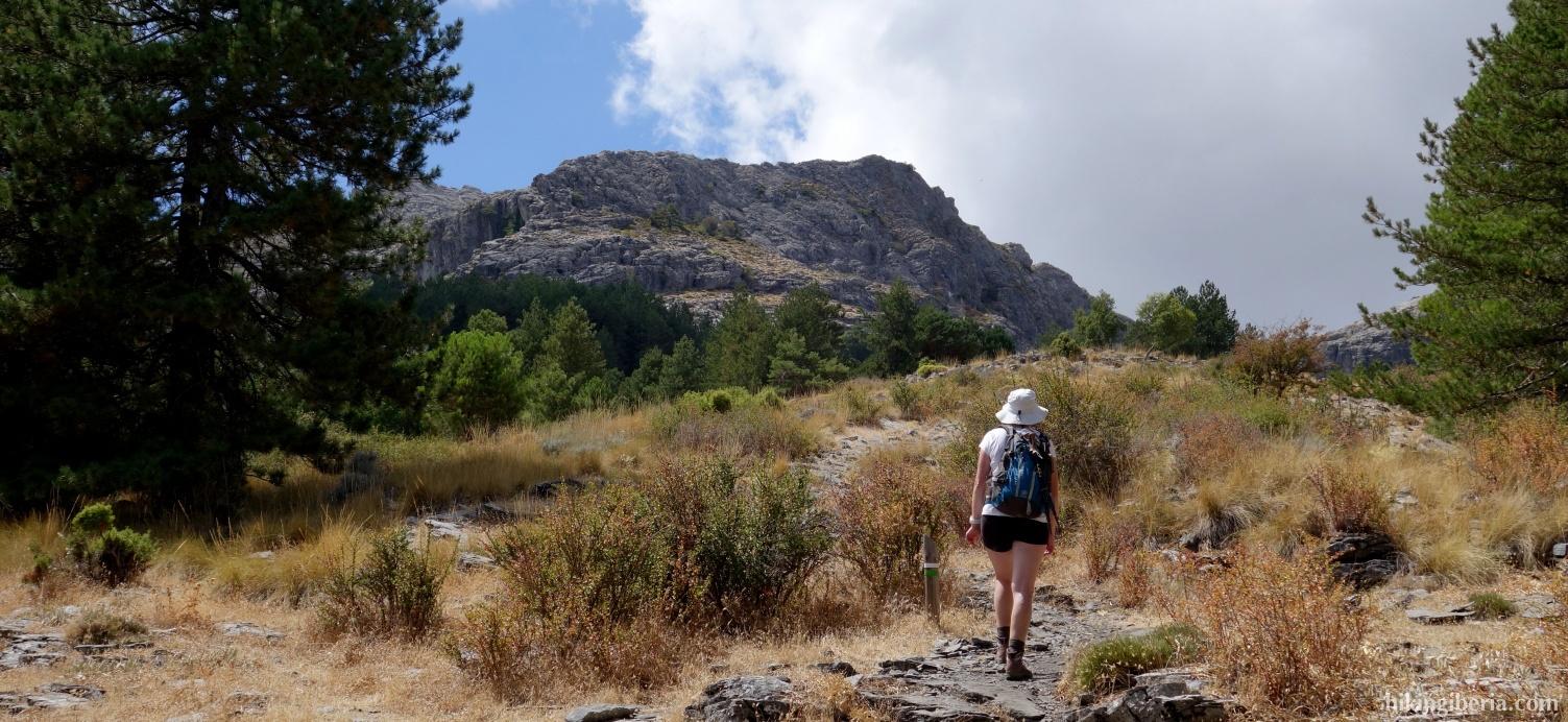 Trail to the Collado de Lobera