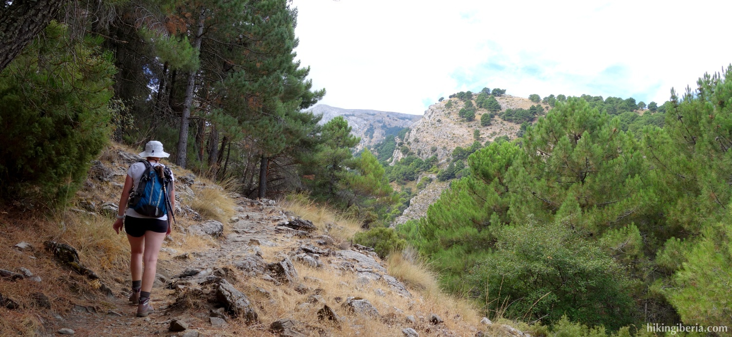 Trail to the Collado de Rojas