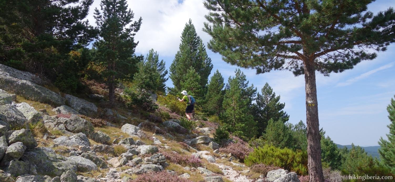 Ascent to the Cerro Zolorro