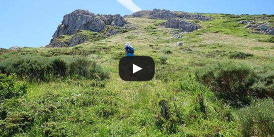Video Cerro Pedroso