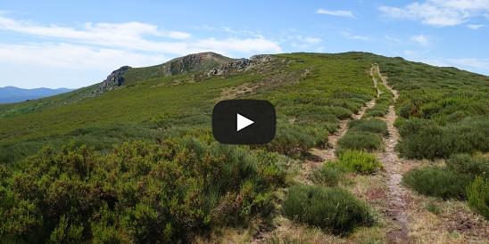 Video The Filera