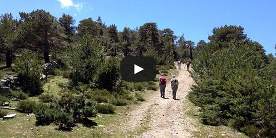 Video Cerro Peña del Águila
