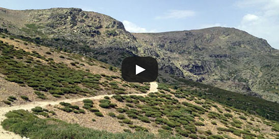 Video Peñalara
