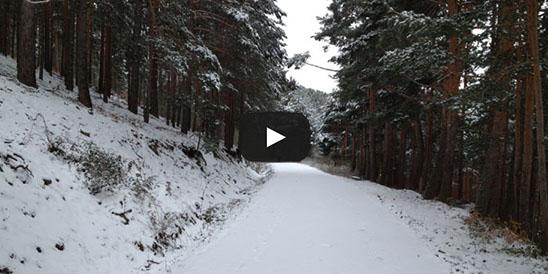 Video Pinares de la Acebeda