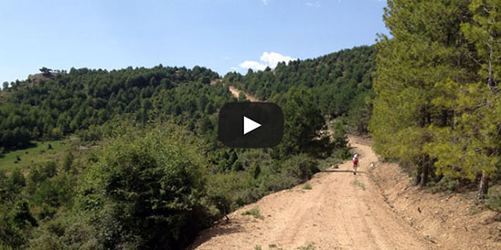 Video Pico de las Nieves