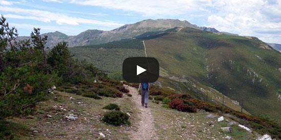 Video Pico del Lobo
