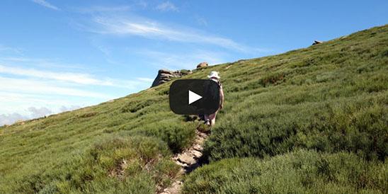 Video Canchal de la Ceja