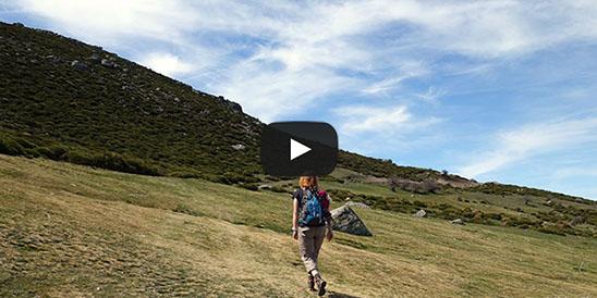 Video Pico Casillas