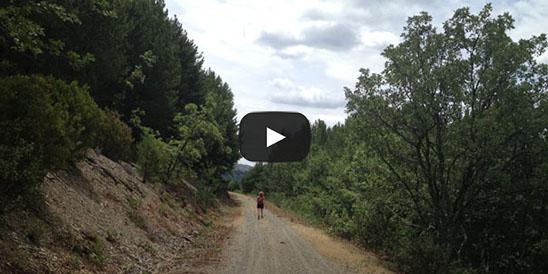 Video Pico Centenera