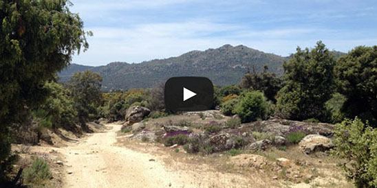 Video Alto del Pinar