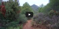 Video Cruz de Juanar