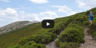 Video https://www.hikingiberia.com/en/routes/fuentes-carrionas-pico-almonga/