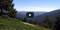 Video The Angostura