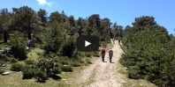 Video https://www.hikingiberia.com/en/routes/guadarrama-cerro-pena-aguila/