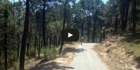 Video La Jarosa