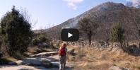 Video Los tres Ermitaños