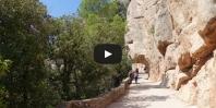 Video Sant Jeroni