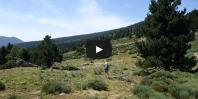 Video La Balmette