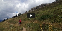 Video https://www.hikingiberia.com/en/routes/pyrenees-bassa-doles/