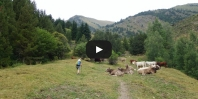 Video Coll de Conflent