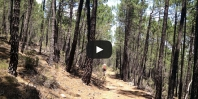 Video Sierra de las Cuerdas