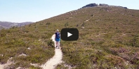 Video https://www.hikingiberia.com/en/routes/sierra-ayllon-atalaya/