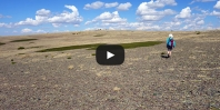 Video Campo