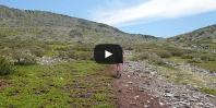 Video https://www.hikingiberia.com/en/routes/sierra-ayllon-ocejon/