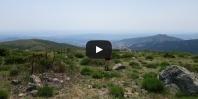 Video Mondalindo (hin und zurück)