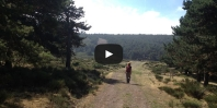 Video https://www.hikingiberia.com/en/routes/sierra-norte-madrid-perdiguera/