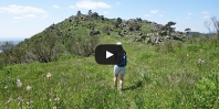 Video https://www.hikingiberia.com/en/routes/sierra-oeste-madrid-almenara/