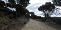 Video https://www.hikingiberia.com/en/routes/sierra-oeste-madrid-pista-infante/